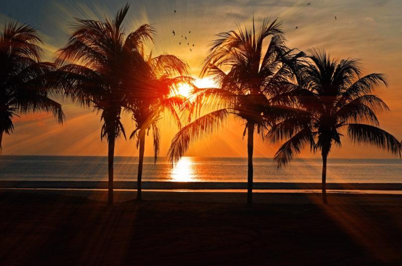 west-palm-beach-ben-gordon