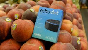 Whole Foods Sells Amazon Echo